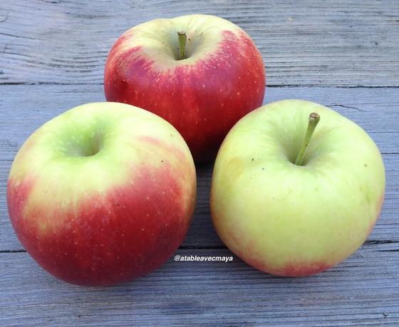 2. pommes Elstar