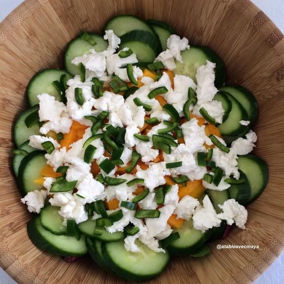 4 - Salade magret mangue chevre - un peu de couleurs