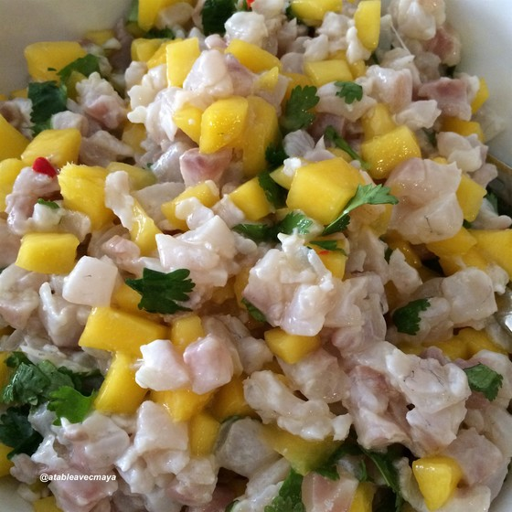 7-ceviche-bar-mangue-gros-plan-pret